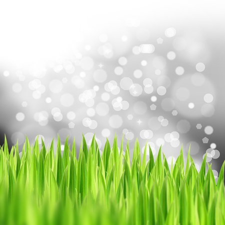 green grasses with bokeh background, abstract  background,crystal background  photo