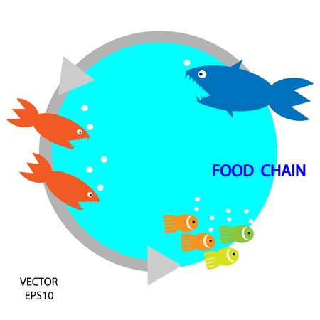 chain food: food chain, a small fish is food for big fish,metaphorical,vector