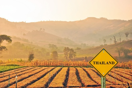 pao: sign road and vegetable garden with mountain background at Vieng Pa Pao district ,Chiang Rai Stock Photo