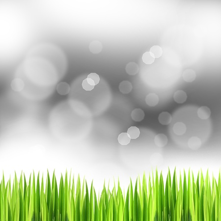 grasses: green grasses with bokeh background, abstract background,crystal background
