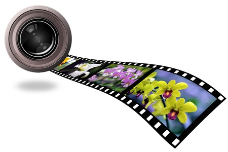len: Flower and len photo with film strip isolated on white background