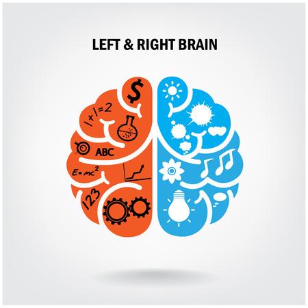cerebro: Lado izquierdo del cerebro creativo y derecha del cerebro Idea concepto de ilustración de fondo vector Vectores