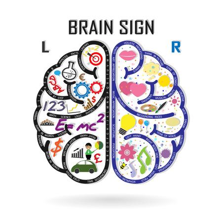 tanulás: Kreatív bal és a jobb agyfélteke ötlet koncepció háttér kialakítása Illusztráció