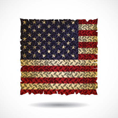 stated: United Stated flag.vector illustration