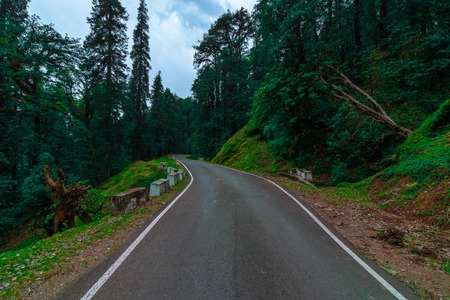 This Road Heading Towards Chopta, Which is surrounded by dense forest, and offers majestic view of Snow Clad Himalayan Ranges and lush green meadows. It is also the starting point of the trek to famous Tungnath Mandir and Chandrashila Summit