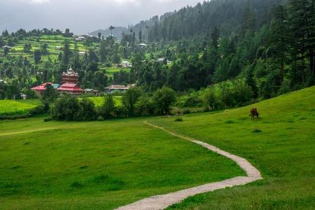 Panoramic view of green meadows in himalayas, Great Himalayan National Park, Sainj Valley, Himachal Pradesh, India Imagens