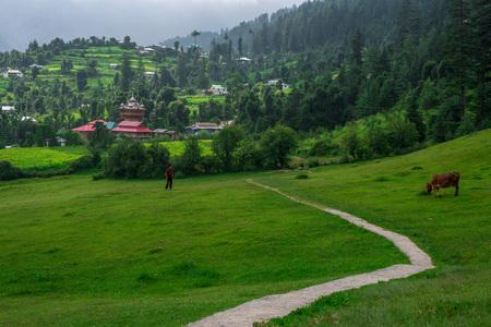 Photo of Temple in Green meadows in himalayas, Great Himalayan National Park, Sainj Valley, Himachal Pradesh, India