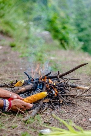 Grilling Corn on Bonfire in Himalayas, India 免版税图像