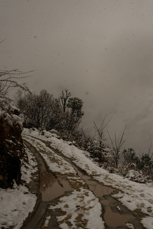 Road in Himalaya. Tree and dry grass plants in the snow. Snow caped mountain range in blurred background - India