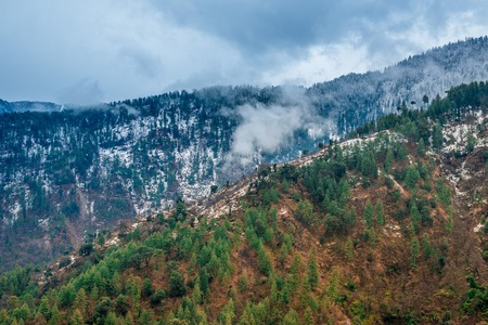Colorful landscape with high Himalayan mountains, green forest, blue sky with clouds in summer in India - 免版税图像 - 123053325