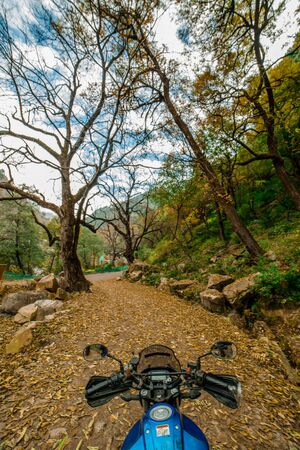 Kullu, Himachal Pradesh, India - November 26, 2018 : Ride in Autumn - Beautiful landscape with rural road, trees with red and orange leaves in himalays 新聞圖片