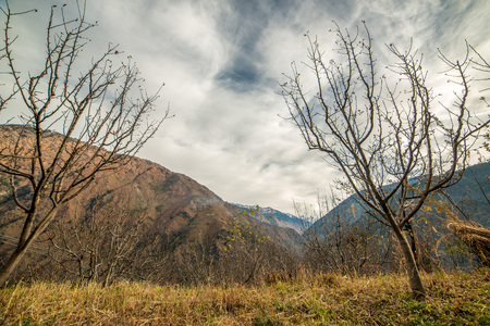 scene of Autumn in mountains in Indian Himalaya - Stock Photo