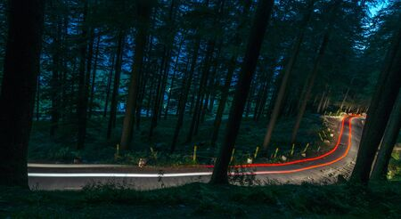 Curving light trails through a wooded road in himalayas