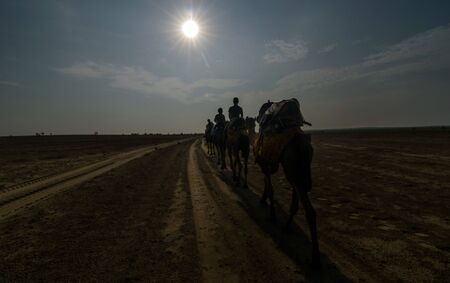 Jaisalmer, Rajasthan, India - July 29, 2019 : Camel man leads his camels across the Thar desert in Sunrise -