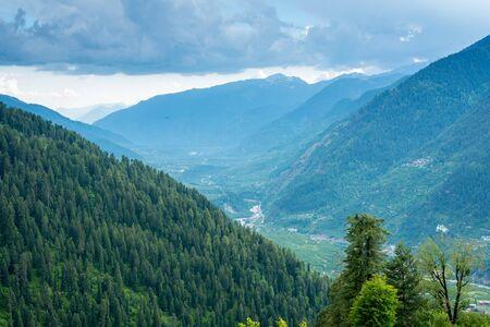 Beautiful View of Himalayas mountains and deodar tree - Stock fotó - 132615968