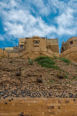 Photo of Pigeons at Jaisalmer Fort - The Golden City of Rajasthan