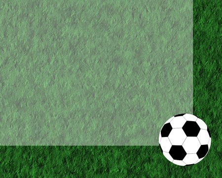 white and black football ball on the grass Stock Photo - 3069429