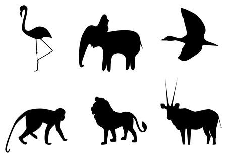 Foto van de silhouetten van dieren van Afrika