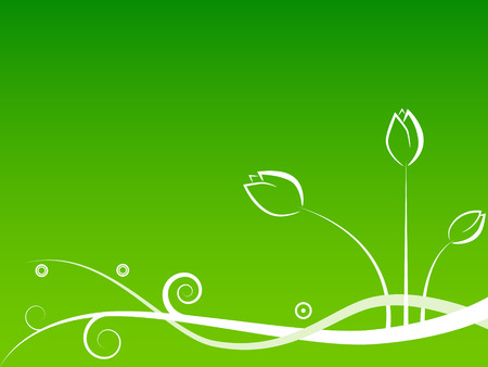 primavera: pattern with white flowers on green background