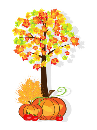 Vector picture of thanksgiving background with pumpkins, crop, apples and tree. RGB