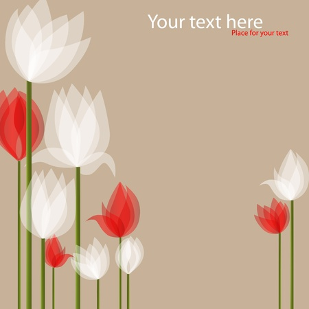 picture with white and red tulips on black background Stock Vector - 8887326