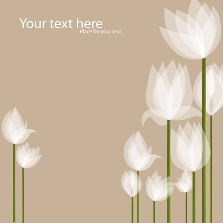 Vector picture with white tulips on black background Vector