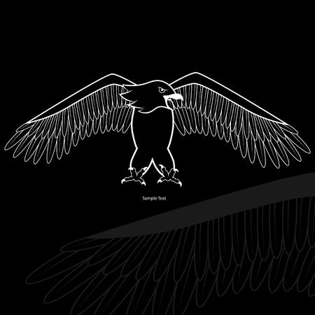 silhouette aquila: Immagine vettoriale con silhouette aquila bianca su sfondo nero Vettoriali