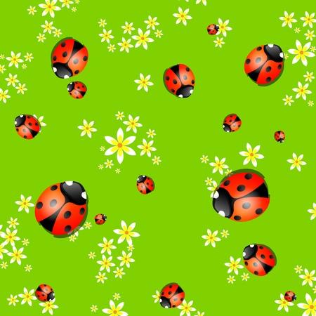 flores peque�as: Fondo de primavera con peque�as flores y mariquitas