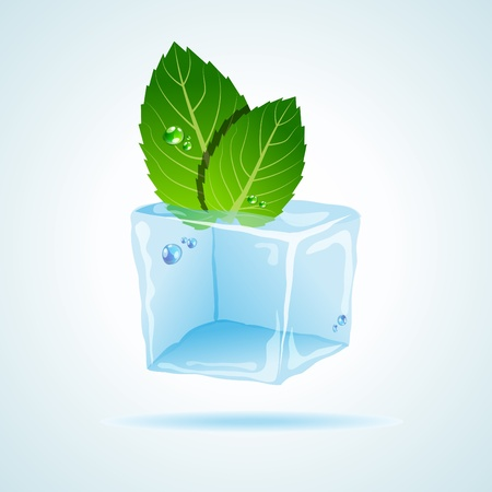 ice plant: picture with ice and mint leaf Illustration