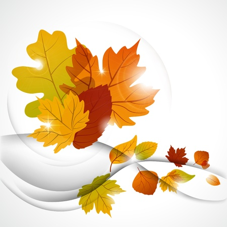 Vector autumn background Stock Vector - 10348548