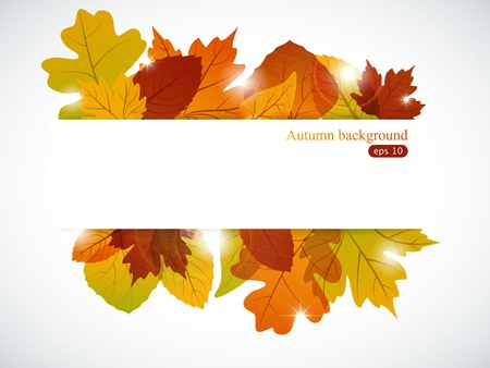 autumn background: Vector autumn background