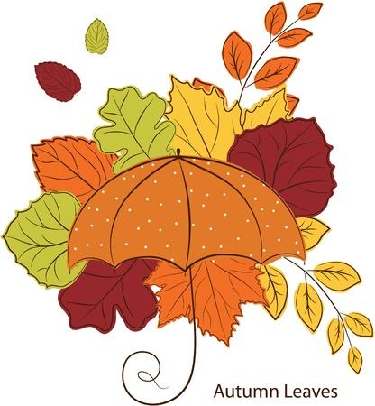 autumn leave and umbrella Vector