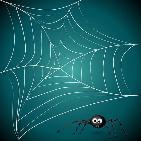 spider net: Vector picture with spider net