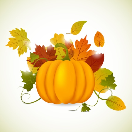 pumpkin and leaves Stock Vector - 11005123