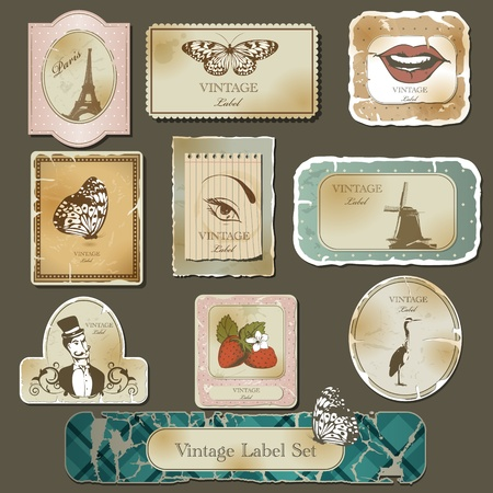 Vintage label  and old paper set Vector