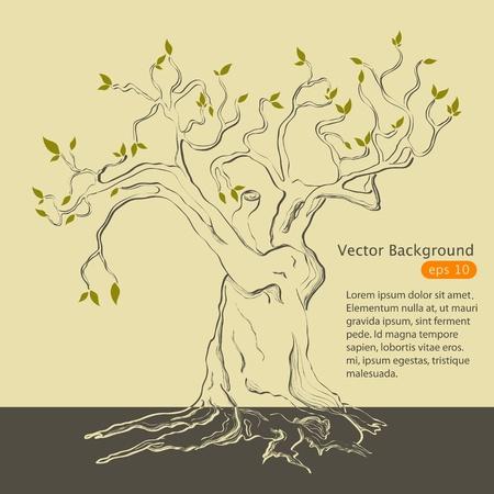 hand drawn tree Illustration