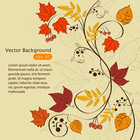 Vector autumn background design Vector