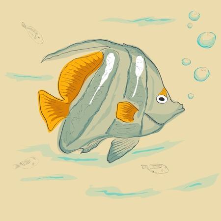 bannerfish: Vector drawing of tropical fish Illustration
