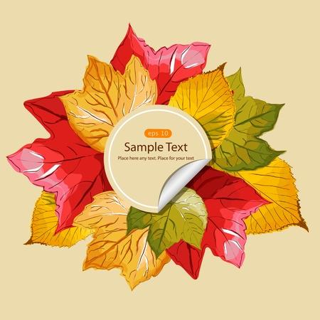 multi coloured: Illustration with multi coloured autumn leaves