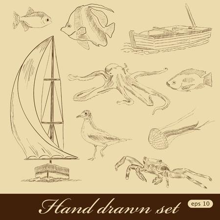 aquatic bird: Hand drawn sea elements
