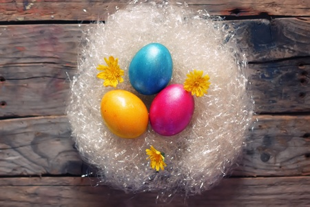 Cute photo with easter eggs in the nest Stock Photo - 18540096