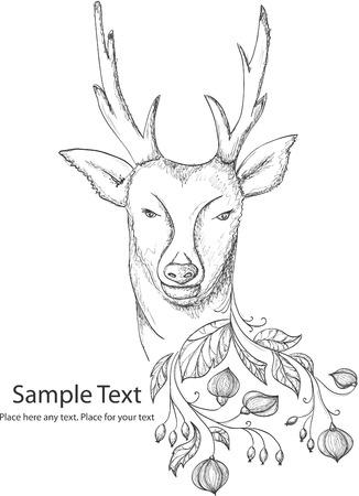 deer antlers: Hand drawn illustrion with deer and floral decoration Illustration