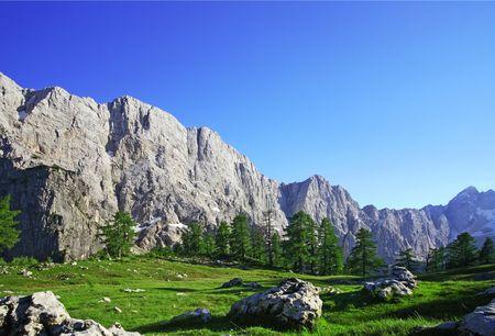 splendour: Alpine splendour