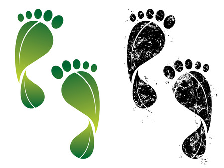 green footprint: Carbon and eco footprints