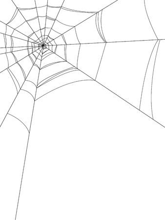 Web araignées Vecteurs