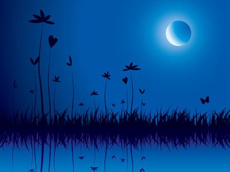 nightime: Evening nature background