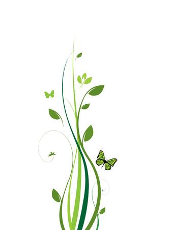 leaf insect: Clean elegant floral design Illustration