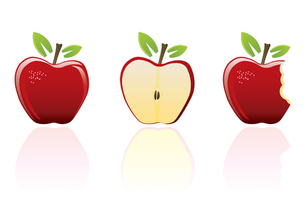 Red apple set Vector