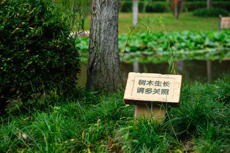public welfare: signboard for caring and protecting the growing of plants Stock Photo