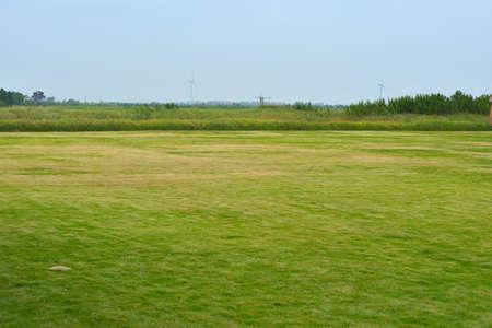 grasslands: grasslands Stock Photo